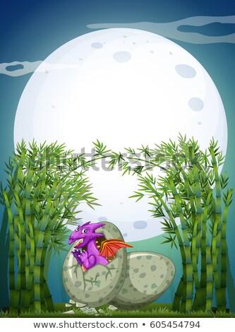 дракон яйцо ночь иллюстрация небе природы Сток-фото © colematt