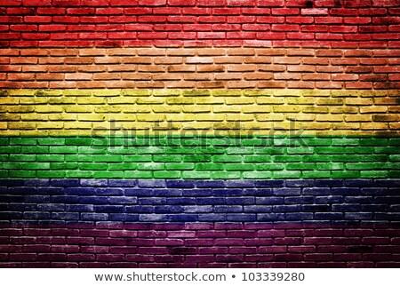 grunge · szivárvány · zászló · homoszexuális · büszkeség · stílus - stock fotó © nazlisart