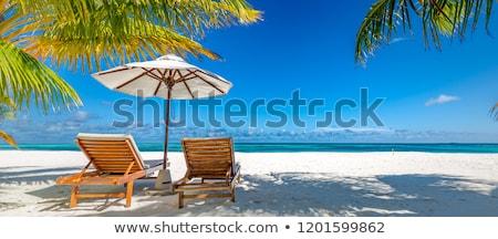 Plage scène président parapluie illustration paysage Photo stock © colematt