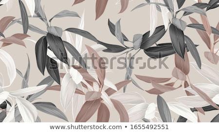 Color houseplants Vector pattern Stock photo © netkov1