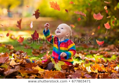 kid plays in autumn park child throwing yellow and red leaves stock photo © dashapetrenko