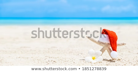 starfish and person relaxing on the beach Stock photo © nito