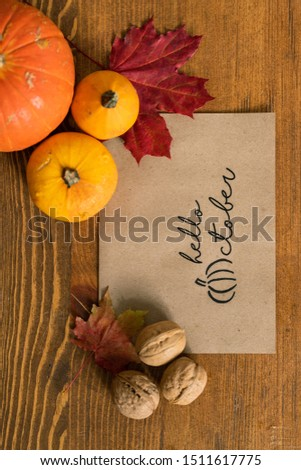 Overview of paper sheet surrounded by walnuts, red maple leaves and pumpkins Stock photo © pressmaster