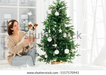 Photo of happy European woman embraces pedigree dog, pose around decorated Christmas tree, enjoy dom Stock photo © vkstudio