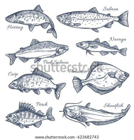 Vektör balık deniz ürünleri ürünleri depolamak Stok fotoğraf © designer_things