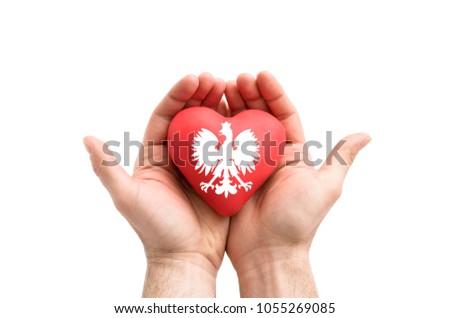Eller kat silah kırmızı kalp yalıtılmış Stok fotoğraf © sqback