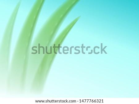 Aloe verschwommen blau editierbar Kosmetik Werbung Stock foto © MarySan