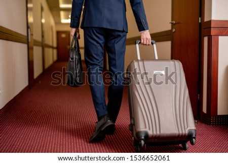 Rear view of elegant businessman with suitcase and handbag leaving hotel Stock photo © pressmaster