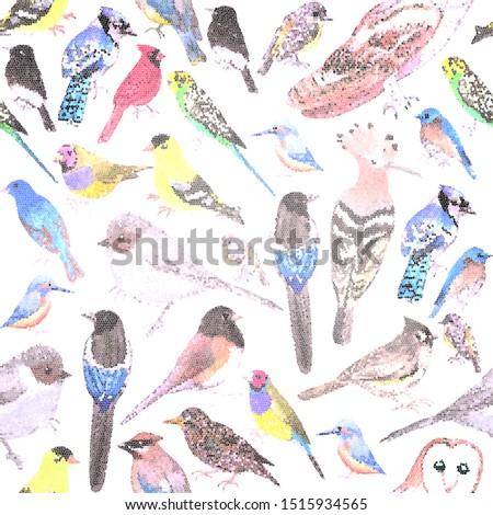 Ptaków Ameryki zwierzęta bezszwowy mozaiki Zdjęcia stock © shawlinmohd