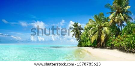 Тропический остров острове юго-восток Таиланд воды природы Сток-фото © rognar