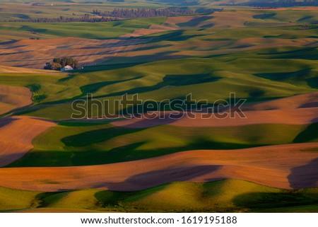 Palouse Region Eastern Washington Farmland Rolling Hills Agricul Stock photo © cboswell