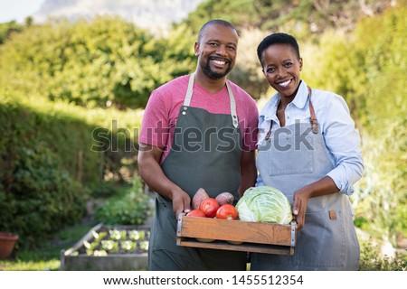 черный фермер женщину Постоянный овощей урожай Сток-фото © vectorikart