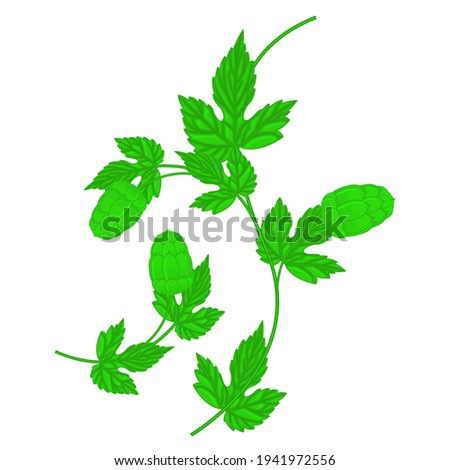 Hop cone and leaf - wavy twig Stock photo © gomixer
