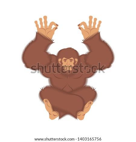 Bigfoot yoga. Yeti yogi. Abominable snowman relaxation and cogni Stock photo © popaukropa