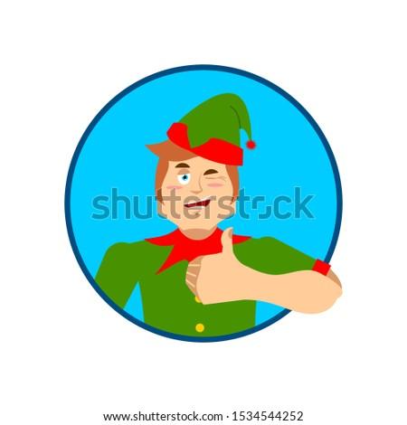 エルフ サンタクロース ヘルパー クリスマス ストックフォト © popaukropa