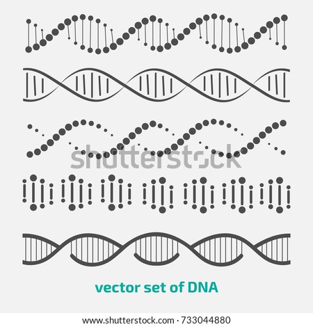 Dna Structure Vector. Human Genome. Genetic Molecule. Strand, Sequence. Illustration Stock photo © pikepicture