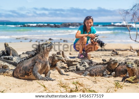 ecotourism tourist photographer taking wildlife photos on galapagos islands stock photo © maridav