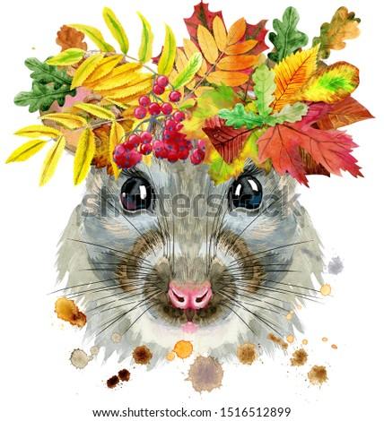 Acuarela retrato rata salpicaduras corona hojas Foto stock © Natalia_1947