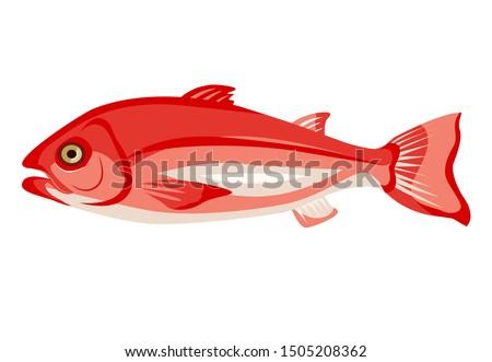 Surowy czerwony ikona odizolowany biały Zdjęcia stock © MarySan
