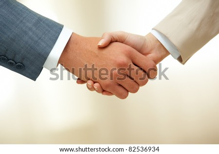 Successful business partners shaking hands after striking new deal at meeting Stock photo © pressmaster