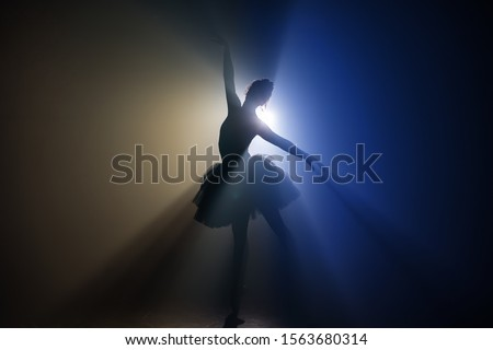 Young ballerina dancer dancing classical ballet against rustic w Stock photo © boggy