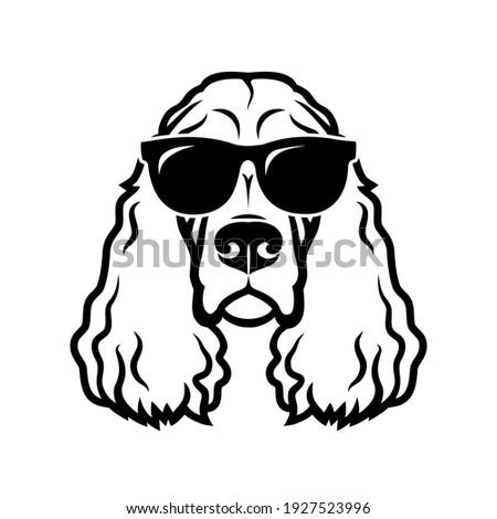 English Cocker Spaniel Head Mascot Black and White Stock photo © patrimonio