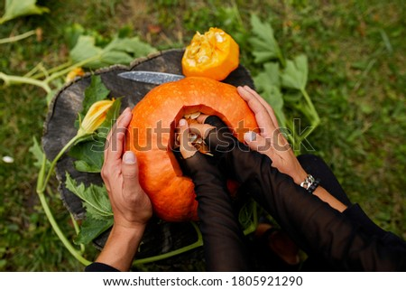 Mão sementes materialismo abóbora halloween Foto stock © Illia