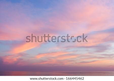Belo ver noite verão cenário rosa Foto stock © robuart