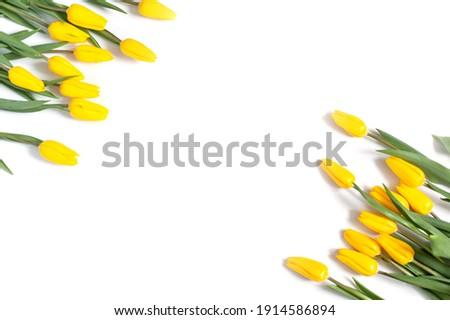 Amarelo tulipas primavera rústico Foto stock © zhekos