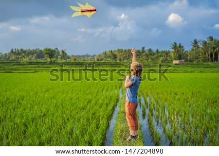 Foto stock: Tourist Boy Launches A Kite In A Rice Field Traveling With Children Concept Kids Friendly Place