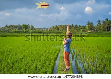 Turista menino pipa arrozal crianças Foto stock © galitskaya