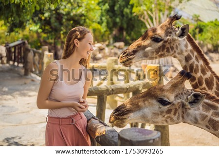 Happy woman watching and feeding giraffe in zoo. She having fun with animals safari park on warm sum Stock photo © galitskaya