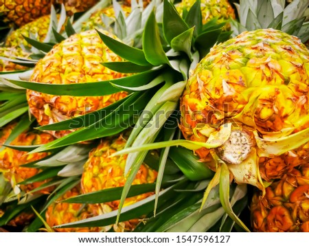 Pile pineapple fruit which has been harvested and display for sale on farmers table in market Stock photo © galitskaya