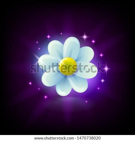 белый ромашка цветок икона Сток-фото © MarySan