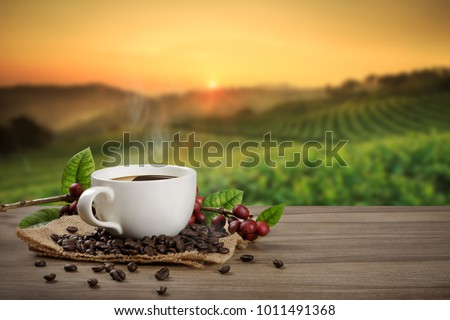 Cup of fresh raw organic coffee with beans and coffee tree leaf on black background. Top view. Space Stock photo © DenisMArt