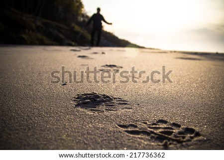 Nordic walking sport run walk outdoor person sea figure beach Stock photo © fotoaloja