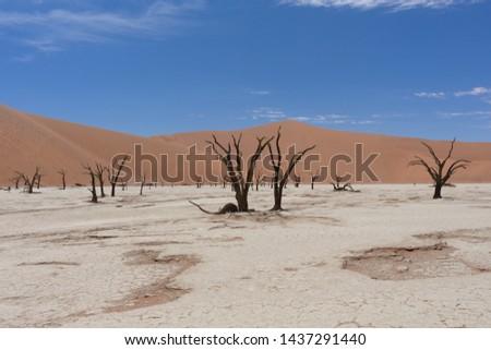 kum · Namibya · manzara · çöl · Afrika - stok fotoğraf © michaklootwijk