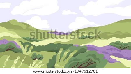 Lavanda montagna colline natura casa mano Foto d'archivio © frimufilms