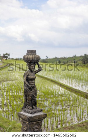 female sculpture at rice fields of jatiluwih in southeast bali stock photo © boggy