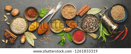 Banner of Flat lay of Seasoning background. Spice and herb seasoning with fresh and dried Stock photo © Illia