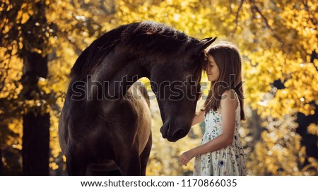 woman and little horse Stock photo © cynoclub