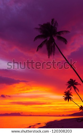 дерево · Blue · Sky · панорамный · природы · лист - Сток-фото © moses