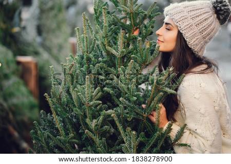 tree in nature Stock photo © koca777