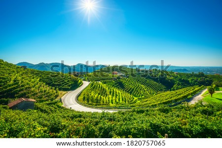 Bor domb Olaszország kép szép ház Stock fotó © magann