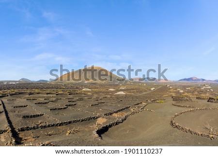 Volcánico paisaje parque manana luz Foto stock © meinzahn