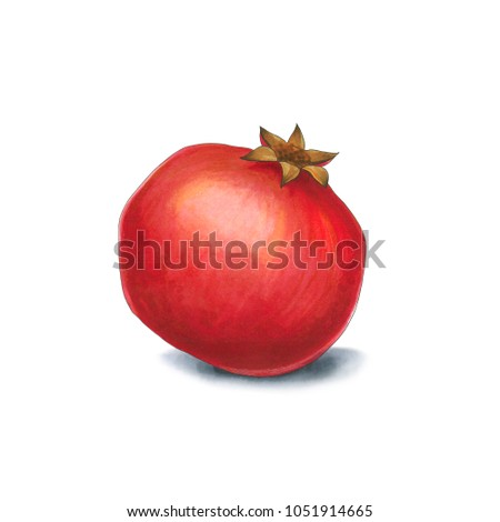 Pomegranate on a white background. Sketch done in alcohol market Stock photo © user_10003441