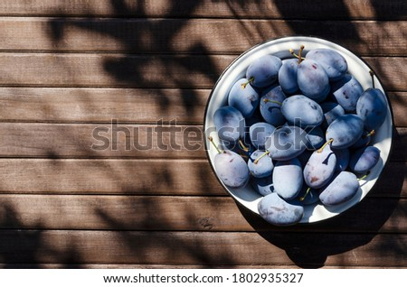 Stock photo: Autumn harvest blue sloe berries on a light wooden table backgro