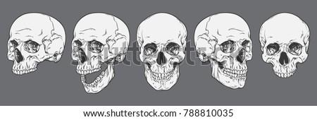 hátborzongató · koponya · sírkő · temető · égbolt · fa - stock fotó © jeremywhat