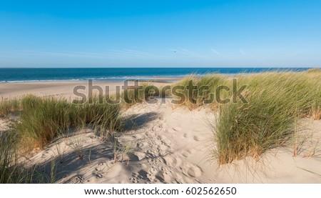 Empty beach in Holland Stock photo © ivonnewierink