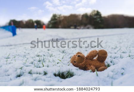 toy lying in the snow Stock photo © OleksandrO